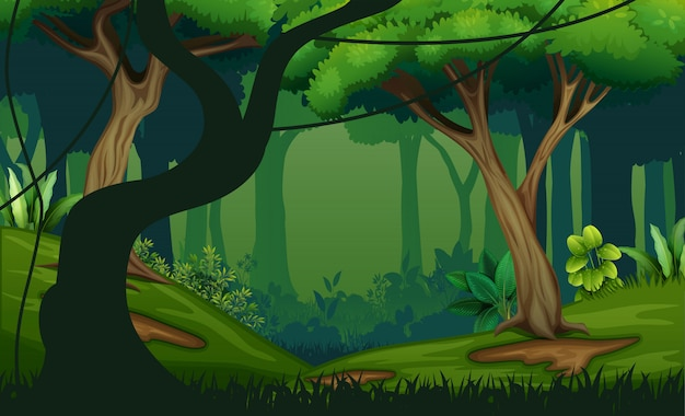 Illustration of landscape with deep jungle Premium Vector
