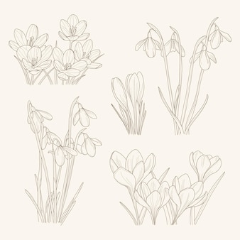 Иллюстрация линейной рисованной садовые цветы