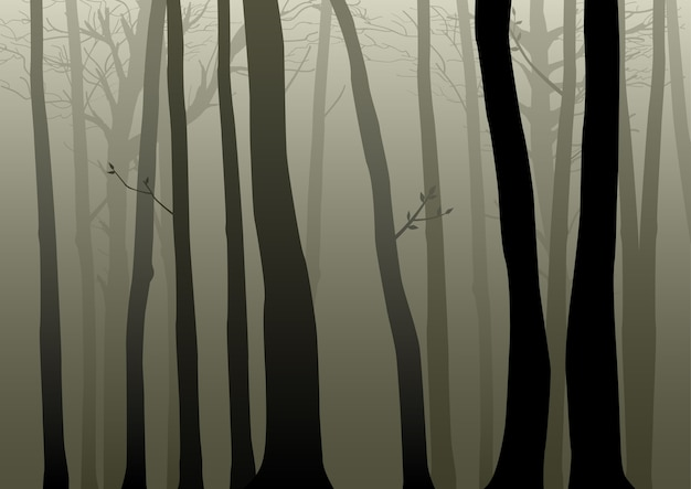 Illustration of misty woods