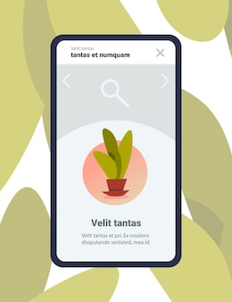 Illustration of a mobile app with house plants