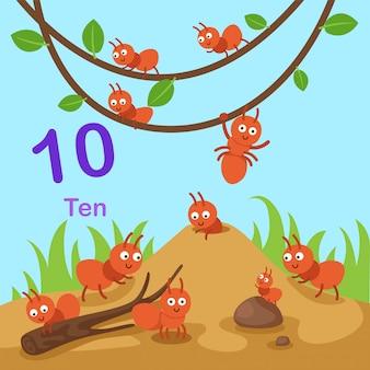 Illustration of number ten