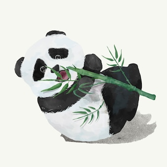 Illustration of a baby panda