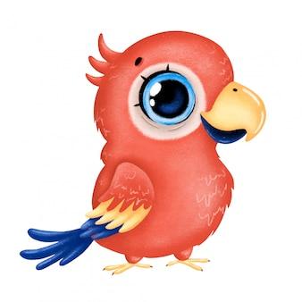 고립 된 큰 눈을 가진 귀여운 만화 빨간 잉 꼬 앵무새의 그림