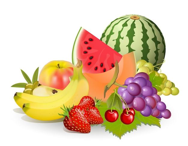 白の上の果物のグループのイラスト