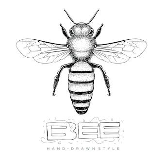 Иллюстрация рисованной пчелы. реалистичное животное