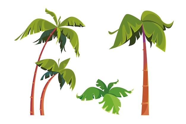 야자수 세트의 그림 열대의 키가 크고 날씬한 나무 고립 된 개체