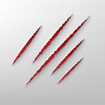 動物の爪の赤いぼろぼろの傷のイラスト