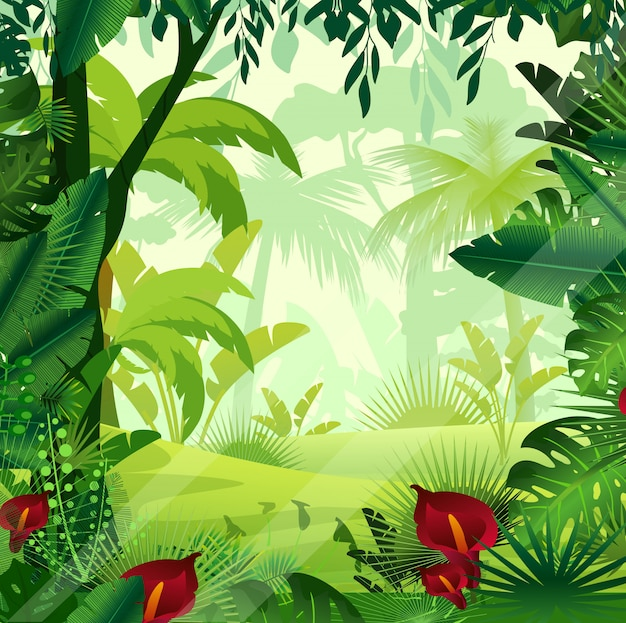 朝の時間の背景のジャングルの芝生のイラスト。シダ、木、茂み、ブドウの木、花の漫画eの明るくカラフルなジャングル。