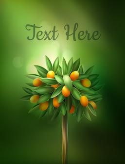 美しい柑橘類の木のイラスト