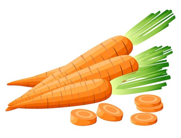 Иллюстрация морковь с вершины. нарезанная морковь. кусочки моркови. морковь с листьями и кусочками моркови.