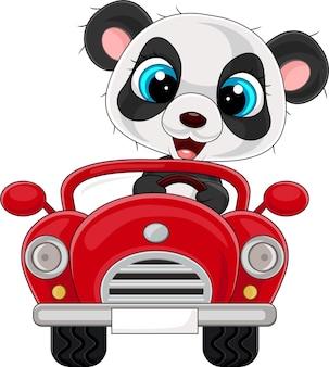 赤い車を運転する漫画の赤ちゃんパンダのイラスト