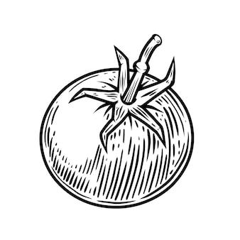 흰색 절연 체리 토마토의 그림입니다. 포스터, 카드, 배너, 전단지, 메뉴 디자인 요소입니다. 벡터 일러스트 레이 션