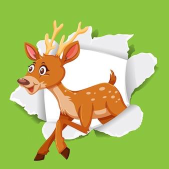 Иллюстрация оленей на зеленой бумаге