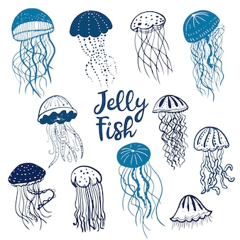 異なる青いシルエットクラゲのイラスト