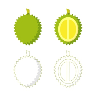 Иллюстрация дуриана, типичного фрукта юго-восточной азии