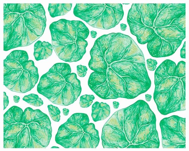 신선한 녹색 베고니아 잎 패턴의 그림
