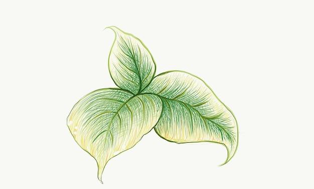 화이트에 신선한 녹색 잎의 그림