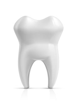 人間の歯のイラスト。