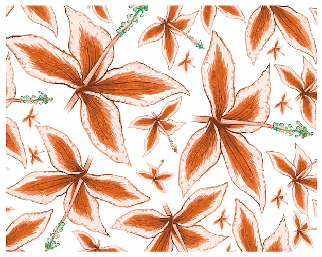 Malaxis calophylla 식물 패턴의 그림