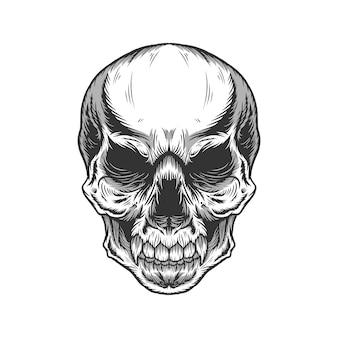 상세한 흑백 두개골 머리의 그림