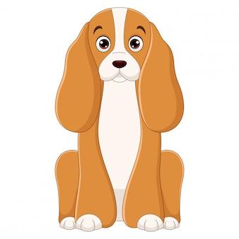 白い背景の上に座っているコッカースパニエル犬漫画のイラスト