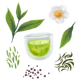 Иллюстрация чая, кружка с чаем, сушеный чай, заварка, чайный цветок, подборка расписного клипарт