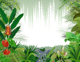 Illustration of tropical forest
