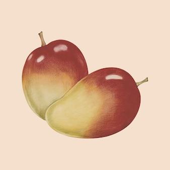 열대 과일 수채화 스타일의 일러스트 레이션