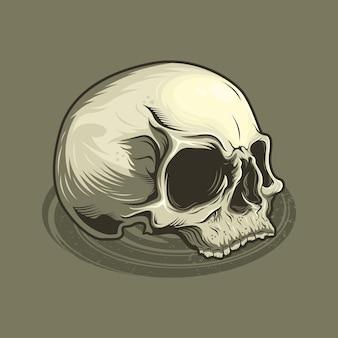 자세한 빈티지 해골 머리의 그림