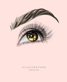 メイクと美容をテーマにしたイラスト。目と眉のメイク。