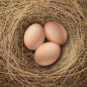 Illustration of pile of brown fresh chicken eggs in nest of hay closeup top view