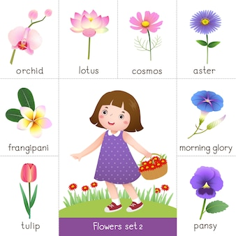 Illustration of printable flash card for flowers and little girl picking flower
