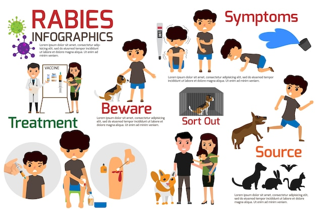 Illustration of rabies describing symptoms and medications or vaccine.
