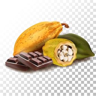 Иллюстрация реалистичные фрукты какао шоколад
