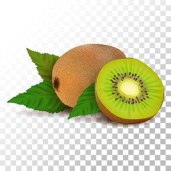 Illustration realistic kiwi on transparent