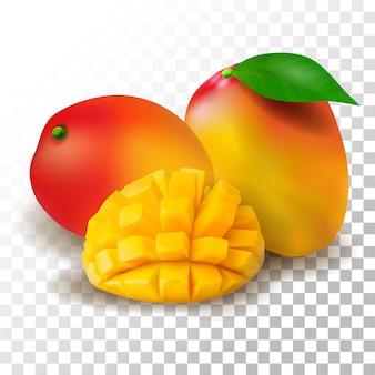 Illustration realistic mango on transparent