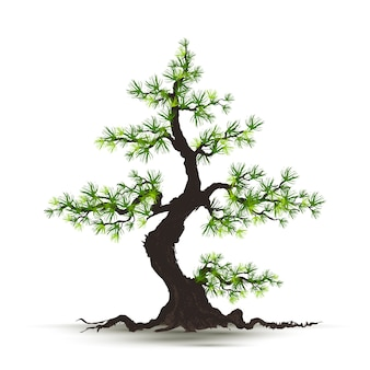 Иллюстрация реалистичная дерево изолированные