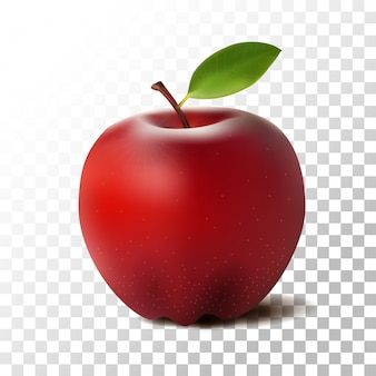 Illustration red apple fruit on transparent