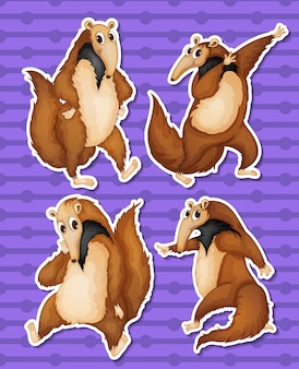 Illustration of a set of anteaters