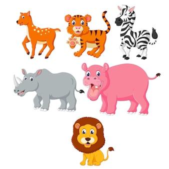 Illustration of set collection of wild animal