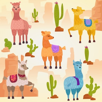Illustration set of cute  alpaca lama and cactus with stones and rocks.