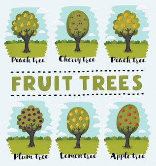 Illustration set of fruit orchard trees