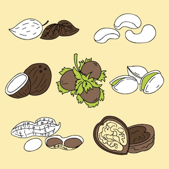 Illustration - set of nuts icons