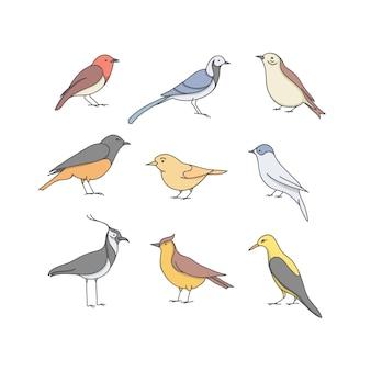 Иллюстрация набор птиц