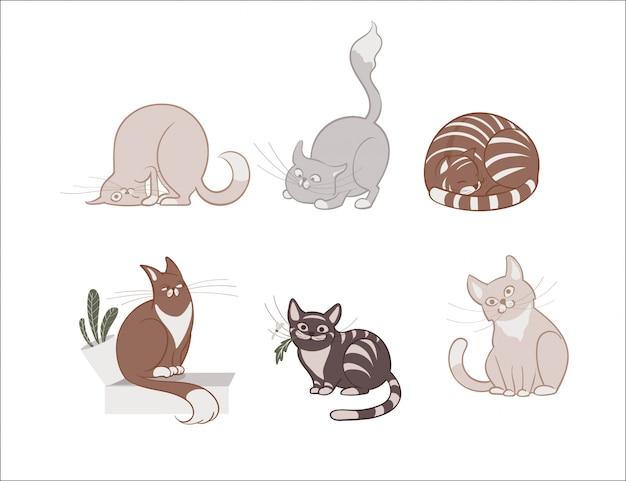 Иллюстрации, набор из мультфильма милые кошки на белом фоне.