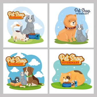 Illustration set of pet shop veterinary
