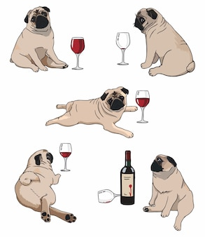 Illustration of a set of pugs in different poses with wine