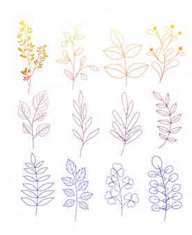 Illustration set of simple doodles of flowers and twigs with leaves in color line e on white background.