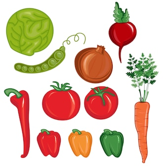 Illustration set of vegetables isolated