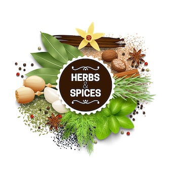 Illustration of set with different types of herbs and spices vector illustration